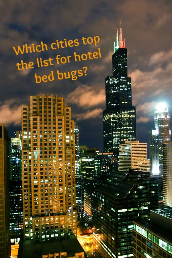 hotel bed bugs