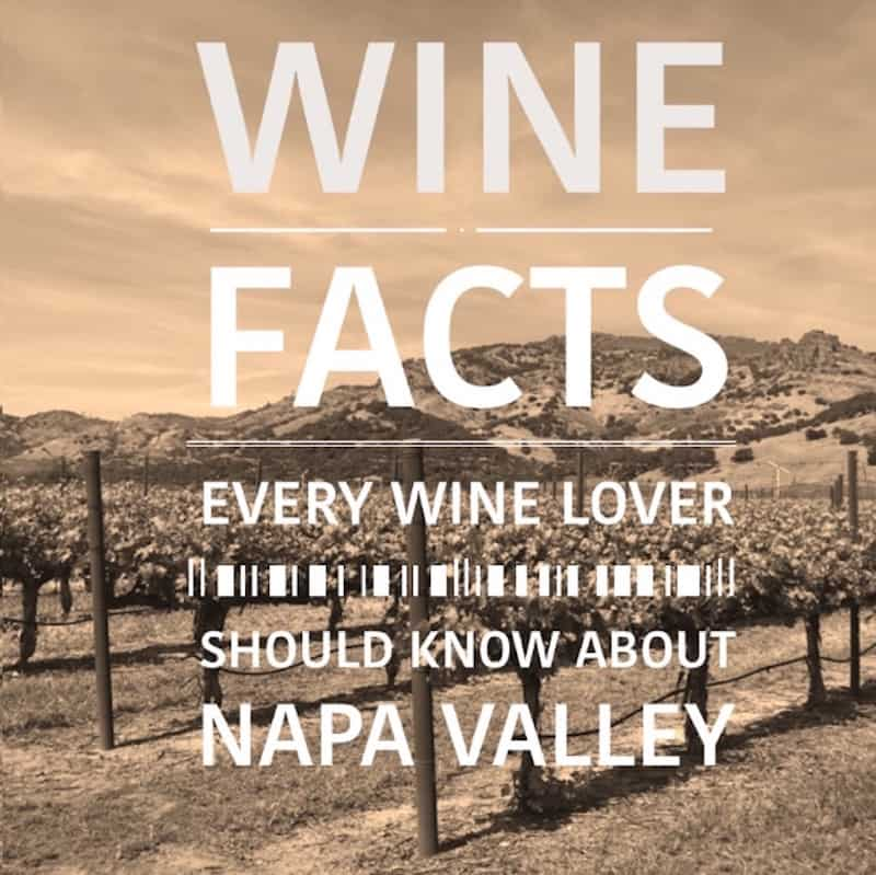 Wine Facts Every Wine Lover Should Know About Napa Valley