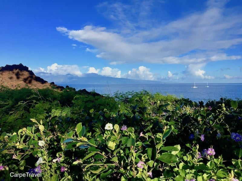 Heading to Maui? Read Carpe Travel's in-depth review of the Westin Nanea, luxury all-villa - family friendly - beach resort in Maui.