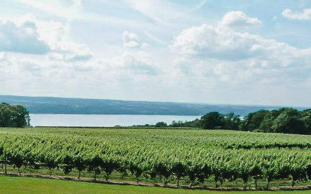 Seneca Lake View