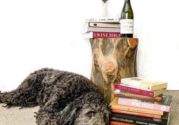 The Best Wine Books to Pour Into