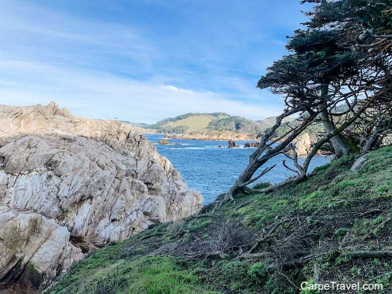Hiking at Point Lobos is one of the top things to do in Monterey County