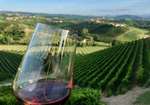 Barolo Wine Region, understating the wines in Barolo